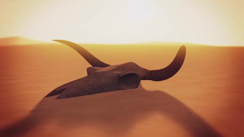 Bull Skull in Desert Global Warming Poaching Concept 3D Animation 5 Animation