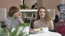 Three young girls are sitting in cafes, smiling, laughing, friends, company Footage