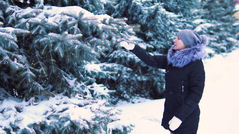 the snow slowly falls from the tree, the girl touches the branch of the tree and Footage