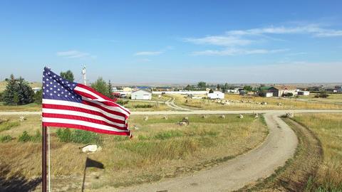 Waving American Flag stock footage
