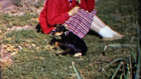 1958: Black dog plays with owner, runs jumps over small white fence Footage