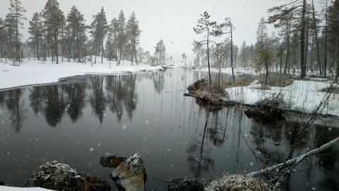 First snow 2. Dense big snow falls over forest and river Footage