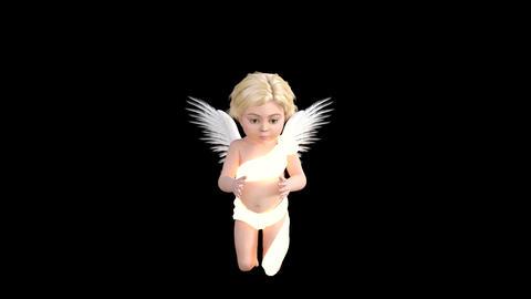 glowing ,cherub, flies and prays,animation,transparent... Stock Video Footage