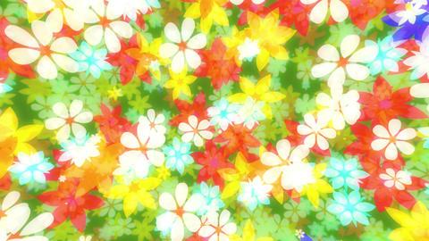 flower00016 Animation