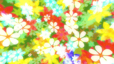 flower00020 Animation