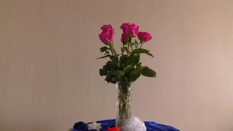 Still life with roses Live Action