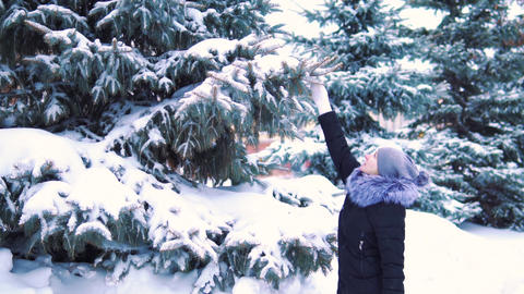 winter slow motion, snow falls slowly from a tree, a girl touches tree branches Footage