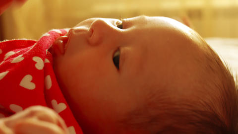 Adult's hand stroking newborn baby girl's face, close-up shot Footage