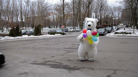 Polar bear with colored balloons Footage
