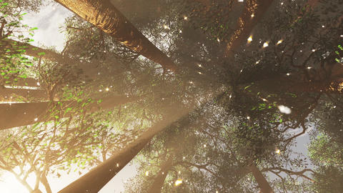 4K Mystic Fantasy Woods with Fireflies Camera Spins and Zoom Out Flat Animation