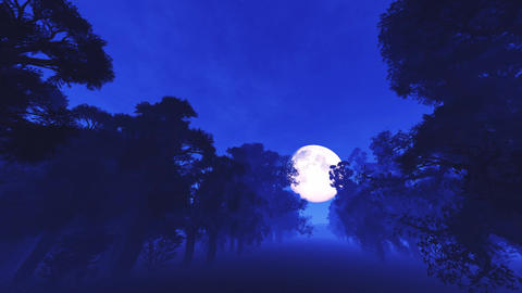 4K Spooky Magic Forest and Fullmoon Wide Angle Pan 1 Animation