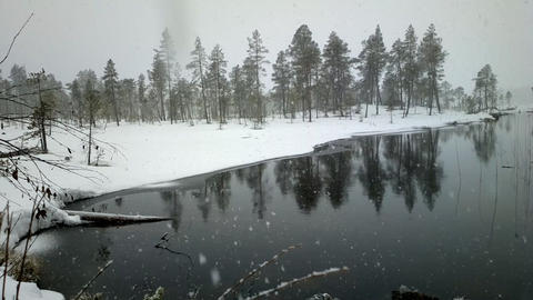 First snow . Dense big snow falls over forest and river Footage