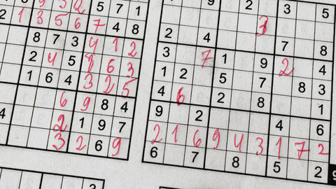 Sudoku Frame with Puzzling Grids of Digits Animation