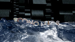 Economics and Mechanisms Animation