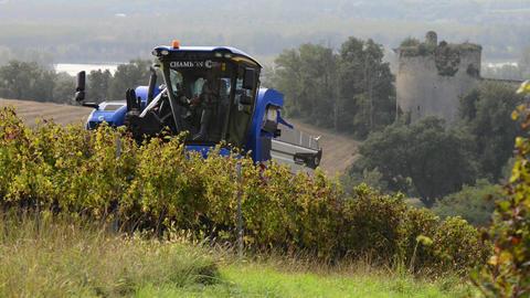 Grape Harvest Machine, Bordeaux Vineyard ビデオ
