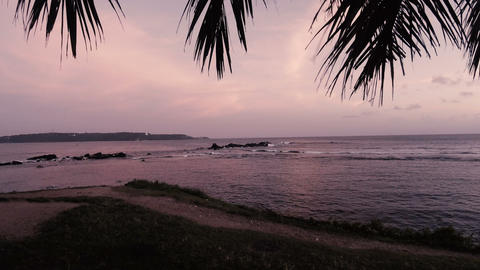 Palm branches swing in the wind. Waves of the Indian ocean at picturesque sunset ビデオ