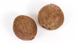 Two ripe whole tropical coconuts rotating on white background. Tropical fruits Footage