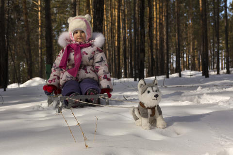 Toy dog husky-drawn sled with a child Photo