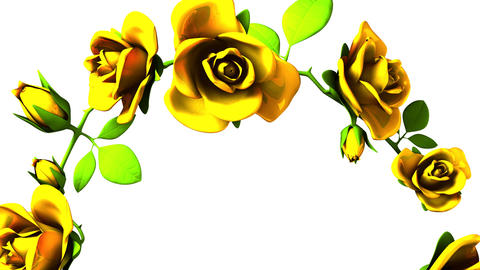 Yellow Roses Frame On White Text Space CG動画