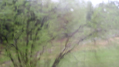 Bad weather. Bush blur behind rainy glass Footage