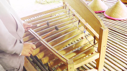 Musician is playing bamboo xylophone Footage