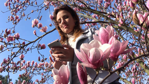 Game On Smartphone In The Flowered Magnolia Garden Is A True Delight stock footage