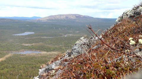 Norwegian plateau fjelds and taiga Footage