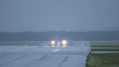 Hare run across runway in front of airplane Footage