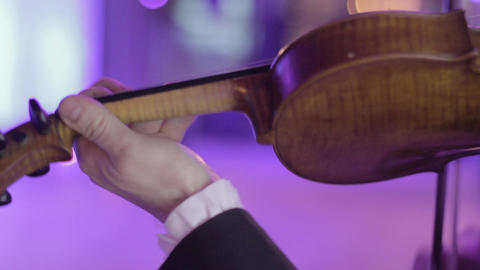Musician plays the violin, a classical musical instrument Footage
