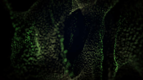 Green Particle Waves Stock Video Footage