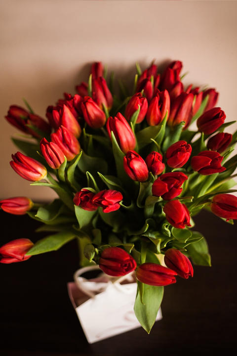Bouquet of red tulips フォト