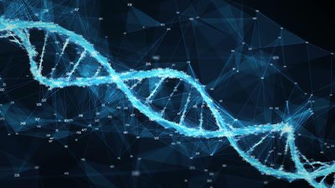 Motion Background Digital Polygon Plexus DNA molecule…, Stock Animation