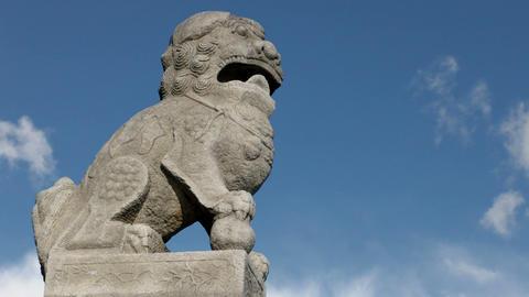 Stone lion guard Shi-dza Footage