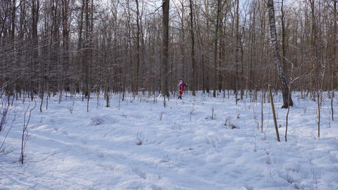 Drunk santa claus goes through the forest towards the camera Footage