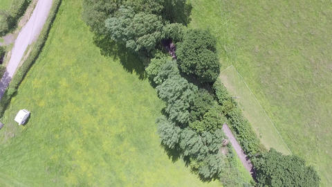 Aerial Footage Over Tree Covered Path on a Windy Day in Flintshire Footage
