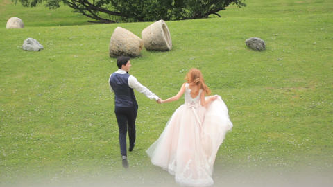 bride and groom are walking along green grass, top view. Slow motion 영상물