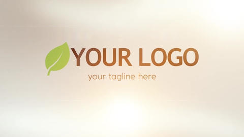Basic Corporate Logo Reveal After Effects Template