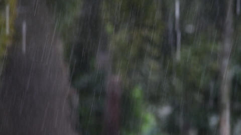 Rain water in the garden Footage