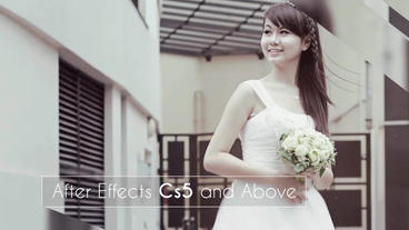 Wedding Lines Slideshow After Effects Template