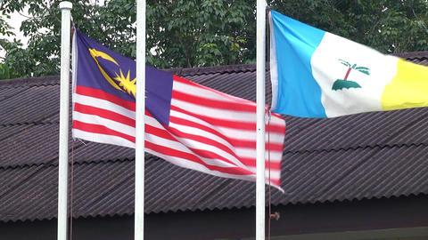 Close-up Malaysia and Penang flags waving Live Action