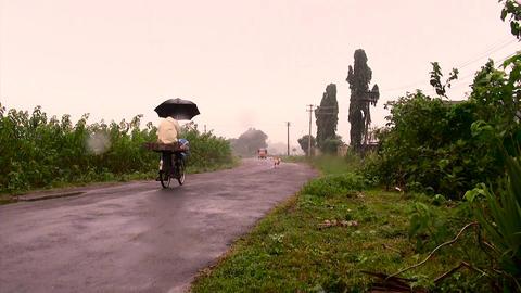Passing on bicycle, Tuk-tuk auto rickshaw taxi coming towards camera Live Action