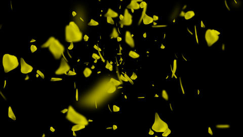 Swirl of petal yellow CG動画