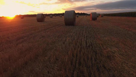 A haystack lies on the field in the early autumn morning. A beautiful rural Footage