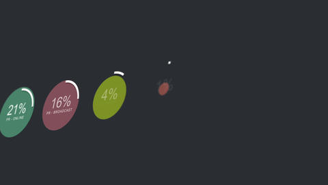 Fictional Startup Company Spendings Graphs Animation 2 Animation