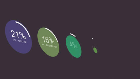 Fictional Startup Company Spendings Graphs Animation 3 Animation
