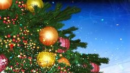 cristmas tree 01 Stock Video Footage
