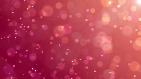 Defocus Light BP 3 HD Animation