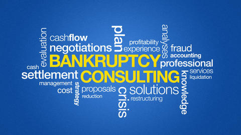 Bankruptcy Consulting Animation