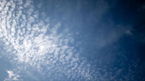 Autumn sky pan TL Stock Video Footage