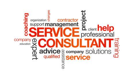 Service Consultant Animation